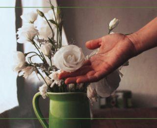 The Transformative Power Of Gratitude – Part 1